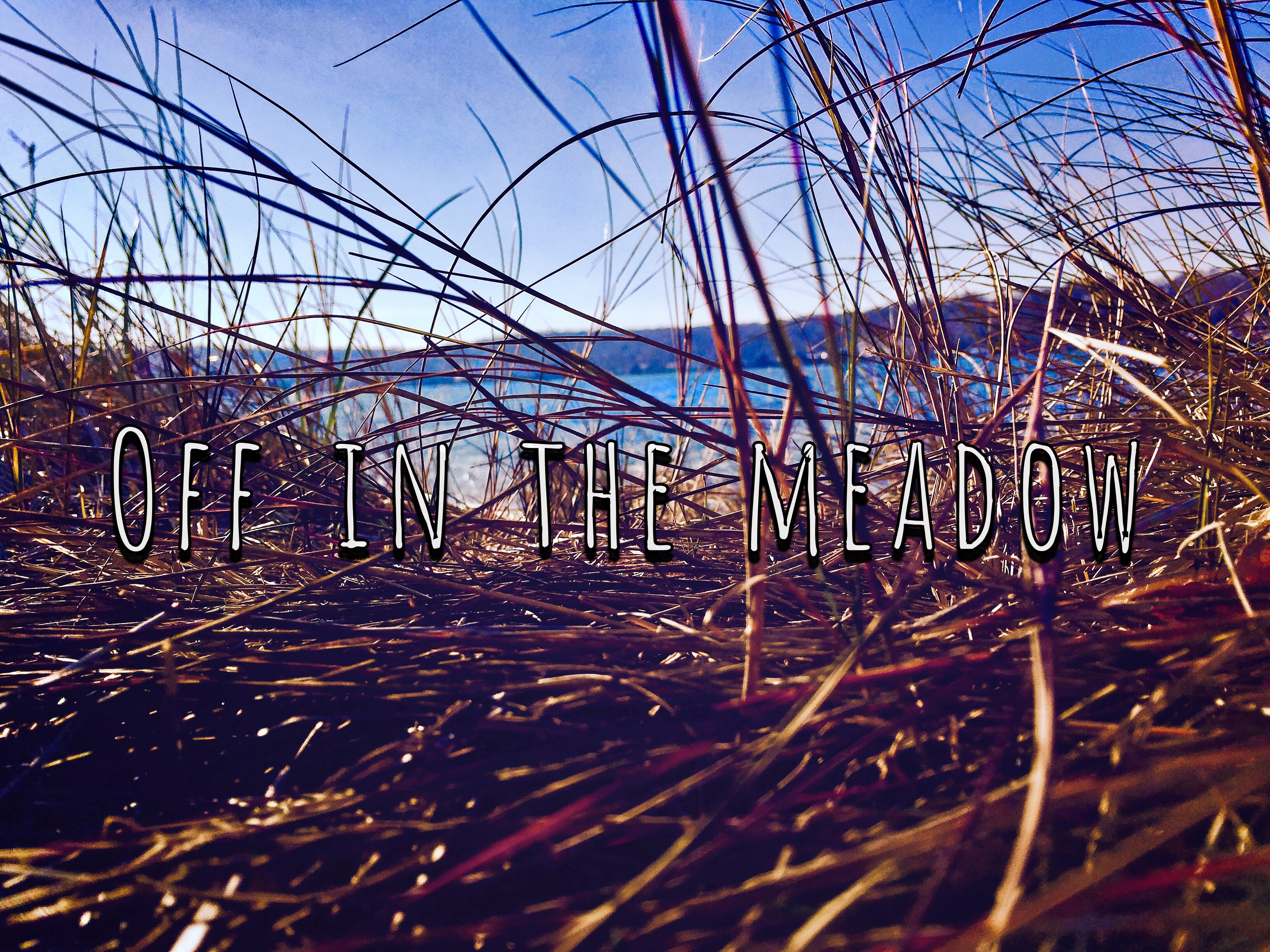 Poem: Off in the Meadow